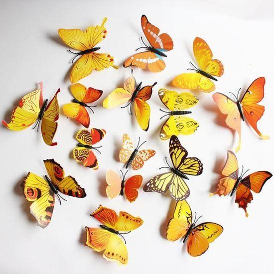 Бабочки оранжевые