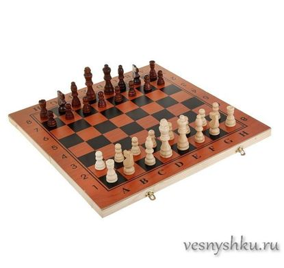 Настольная игра: Шахматы, шашки, нарды