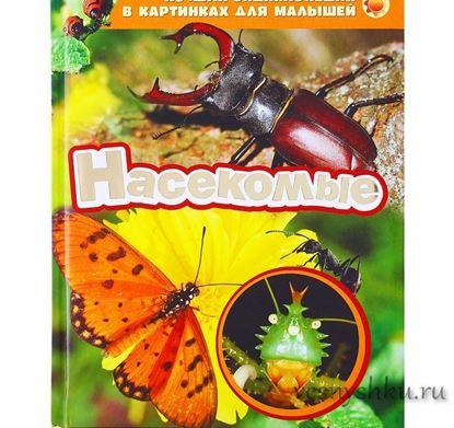 Лучшая энциклопедия насекомые главная