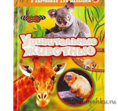 Лучшая энциклопедия удивительные животные главная