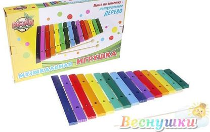 Детский разноцветный ксилофон на 15 тонов
