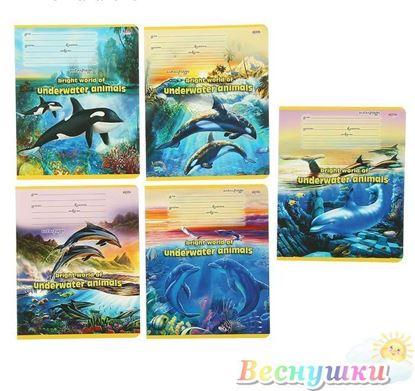 тетрадь дельфины